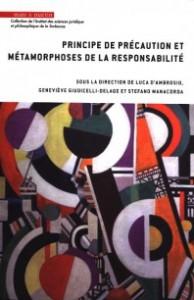 principe-de-precaution-et-metamorphoses-de-la-responsabilite-9782849343326